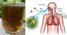 Three Ingredient Killer! Cleanse Your Lungs Of Phlegm, Toxins, And Inflammation! - Mozzart Magazine