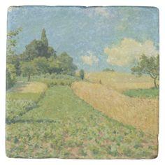 The Cornfield Stone Coaster