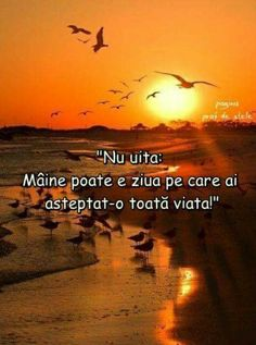 PENTRU CINE O APUCA! Good Night, Good Morning, Christ In Me, Maine, Names Of Jesus, True Words, Motto, Cool Words, Positive Quotes