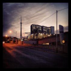 #SABC Auckland, Cn Tower, Park, Building, Travel, Viajes, Buildings, Parks, Destinations