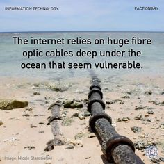 The internet relies on huge fibre optic cables deep under the ocean that seem vulnerable. #informationtechnology #internet #fibreoptic #cable #ocean #vulnerable #facts #Factionary Widespread Panic, Cable Companies, Social Media Updates, Under The Ocean, Fiber Optic Cable, Information Technology, Vulnerability, Internet, Facts