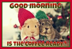 Good Morning Is The Coffee Ready good morning good morning quotes funny good morning quotes cute good morning quotes good morning quotes for friends winter good morning quotes christmas good morning quotes Morning Quotes For Friends, Cute Good Morning Quotes, Good Morning Picture, Good Morning Good Night, Morning Sayings, Morning Pictures, Morning Images, Best Coffee, My Coffee