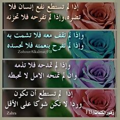 Photo Words, Rose, Quotes, Flowers, Islamic, Poetry, Advice, Reading, Places