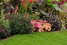 """Show Garden """"Chocolate Orange""""    Tatton Park Flower Show 2011 - Show Garden """"Chocolate Orange""""."""
