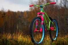 Hipster dirt jump bike