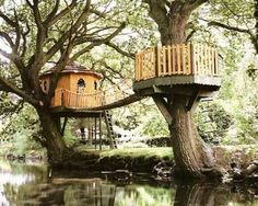Treehouse complete with bridge and lookout! :-)