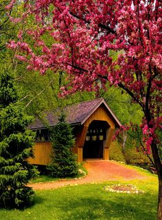 Covered Bridge                                                       …