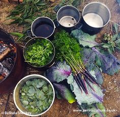 Emma Bowen from Milkwood, Australia talks to Belinda Sheekey about the wide range of plants you can grow for dyeing. From turmeric and red cabbage to onion skins and pomegranates.