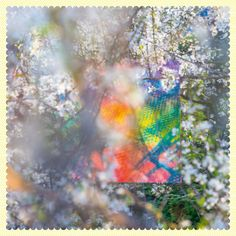 Four Tet – Sixteen Oceans / Text Records Four Tet, Sixteen, Eric Prydz, Pochette Album, Time In The World, Great Albums, Electronic Music