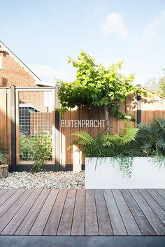 Dutch Gardens, Back Gardens, Small Gardens, Outside Living, Outdoor Living, Outdoor Plants, Outdoor Gardens, Garden Studio, Garden Gates