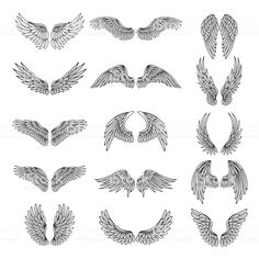 Monochrome illustrations set of different stylized wings for logos or.Monochrome illustrations Set of different stylized wings for logos or label design projects. Vector picture set Royalty free monochrome illustrations Set of different stylized w Tattoo Drawings, Body Art Tattoos, Small Tattoos, Sleeve Tattoos, Dove Tattoos, Tatoos, Alas Tattoo, Soul Tattoo, Simple Tattoo Designs