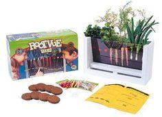 Scholastic Root-Vue Farm, http://www.amazon.com/dp/B00004W5ZB/ref=cm_sw_r_pi_awdm_z8PEub14PKCZA