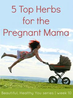 5 Top Herbs for the Pregnant Mama | Beautiful Healthy You blog series @ Little Natural Cottage