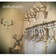 Image result for decorating with deer antlers