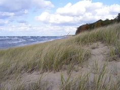 A day-use park along a secluded strip of Lake Michigan shoreline, Saugatuck Dunes State Park offers miles of shore line. Michigan Vacations, Michigan Travel, State Of Michigan, Lake Michigan, Miles To Go, Beach Trip, Hiking Trails, Day Use, Weekend Getaways