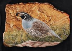 Valley Quail oil painting on picture rock by ArtsNTreasuredGifts