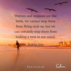 Zen Quotes, Smart Quotes, Calm Quotes, Soul Quotes, Spiritual Quotes, Life Quotes, Inspirational Quotes, Living Quotes, Crush Quotes