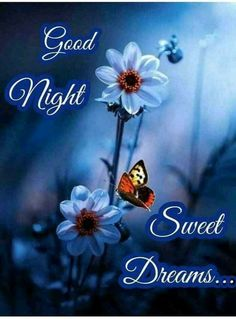 Good Night Wishes, Good Night Sweet Dreams, Good Night Quotes, Starry Night Wallpaper, Baby Photography Poses, Goeie Nag, Cheer, Remedies, Happy