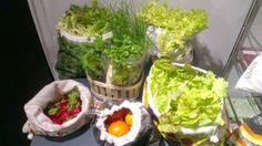 #cosiblog On a adopté le sac à salades http://wp.me/p3mqmW-1mN