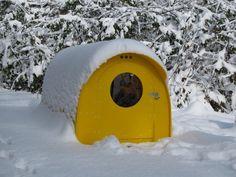 One man quonset hut emergency shelter http://www.elkinsdiy.com/stationary-shelters/homeless-emergency-shelter/