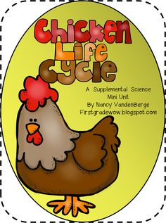First Grade Wow: Animal Feet and Chicken Life Cycle