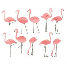 Fantastic cute pink flamingo wall decal stickers - great for kids or bathroom