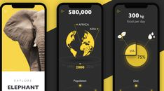 The case study unveils the UI design process for the educational mobile app devoted to nature exploration. Elephant Facts, Stock Analysis, Dark Color Palette, Visual Hierarchy, App Icon Design, Charity Organizations, Mobile Ui Design, Greater Good, User Interface Design
