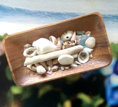 Wooden Tray Seashell Beach Home Decor Accent by SitkaTreesSaltySeas on Etsy