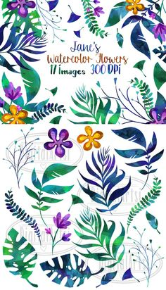 Watercolor Tropical Leaves Clipart. Watercolor Flowers. $5.00