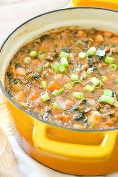 nightshade-free vegetable beef soup