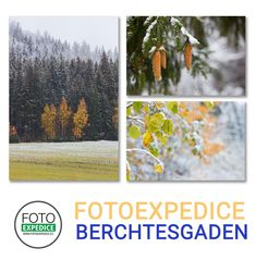 Když se s #fotoexpedice vydáte na fotografické objevování světa, třeba do Berchtesgadenu, zažijete a vyfotografujete překrásnou přírodu a odvezete si nevšední zážitky a zkušenosti. Třeba jako při návratu z poslední fotoexpedice #Berchtesgaden. Na snímku přejezd přes Šumavu, 28.10.2018 #fotografování #fotokurz #lektor Photos