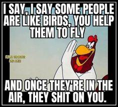 Funny Cartoon Quotes, Cartoon Jokes, Funny Cartoons, Funny Jokes, Funny True Facts, Funny Memes About Life, Foghorn Leghorn Quotes, Wisdom Quotes, Humor