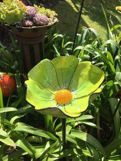 Lime Flower Birdbath