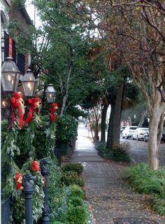 Charleston, SC - Christmas