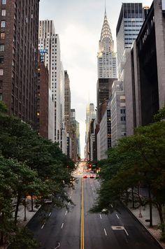 skyscraper buildings street avenue lanes road asphalt trees urban city architecture manhattan 42nd Street new york usa photo photograph pict...