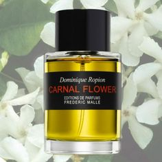 The Sexiest Summer Perfumes - Frederic Malle, Carnal Flower ($250). Think dreamy tuberose cut with a hint of eucalyptus. If you like your seduction intellectual, this is the fragrance for you.
