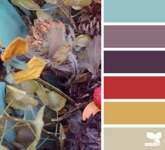 Dried Hues - http://design-seeds.com/index.php/home/entry/dried-hues6