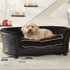 Elevated Dog Bed Sofa in Black Color