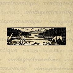 Deer Lake Image Graphic Printable Digital Download Illustration Vintage Clip Art for Transfers Printing etc HQ 300dpi No.1981