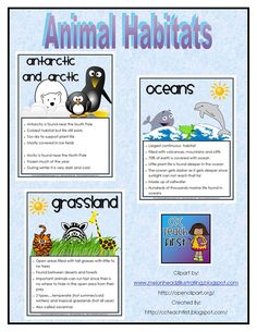 C & C Teach First: Animal Habitats Facts Sheets Kindergarten Science, Elementary Science, Science Classroom, Teaching Science, Science For Kids, Science Activities, Science Projects, School Projects, Teaching Habitats