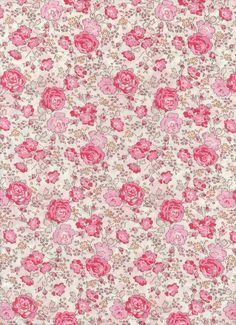 Liberty Tana Lawn fabric  Felicite 6x27  fabric by MissElany