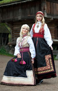 Bunads from Telemark , Norway Folk Costume, Costume Dress, Norwegian Clothing, Costumes Around The World, People Of The World, Traditional Dresses, Sites Touristiques, Ethnic Fashion, Folklore