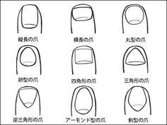 あなたの爪はどのタイプ?爪の形で分かる性格診断 | 暇つぶしニュース