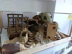Hamster Tank, Hamster Diy Cage, Robo Hamster, Hamster Habitat, Hamster Stuff, Hamster House, Pet Mice, Pet Rats, Hamster Species