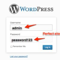Updating WordPress Plugins and Themes Safely