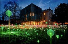 Glowing gardens- google it!
