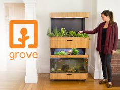 The Ecosystem is a fun, beautiful way for you to grow fresh food in your home, all year long. Designed and built by engineers from MIT.
