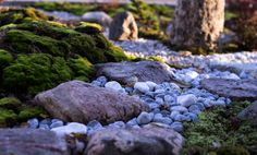 Japanese garden in Finnland, stepping stones, moss www.nordicatmosphere.com