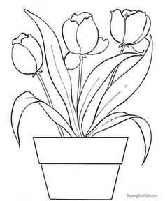 Tulip Flowers Coloring Pages
