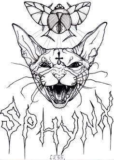 sphynx cat illustration - Google Search